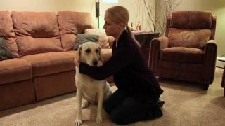 Havahart® Remote Dog Trainer User's Guide