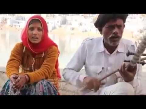 Rajasthani Song l केसरिया हजारी गुल रो फूल l Best Local Music