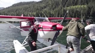 Aerial Herring Surveys in Prince William Sound