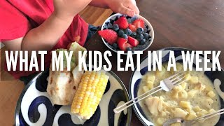 What My KIDS Eat in a Week Part 2