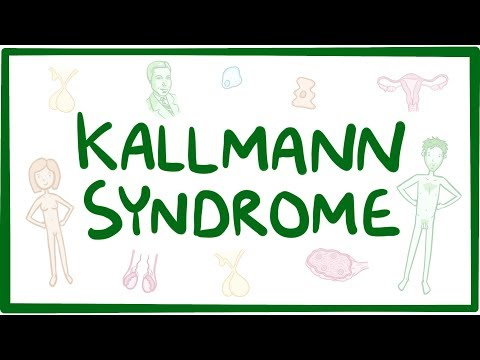 Kallmann syndrome - causes, symptoms, diagnosis, treatment, pathology