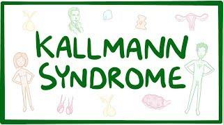 Kallmann syndrome - causes, symptoms, diagnosis, treatment, pathology