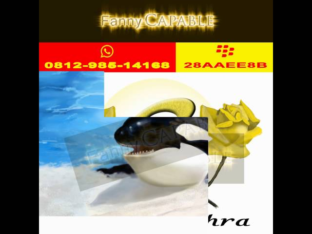 0812-985-14168, Fanny Capable , Logo Wallpaper , Logo Websites , Logo With Name