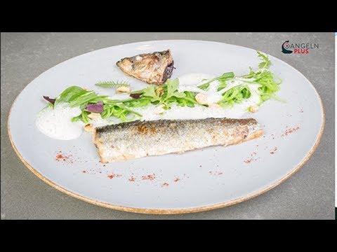 ANGELNplus EXKLUSIV - Der Fischfond-Manager – Folge 1: Hering mit Bohnensalat   Trailer