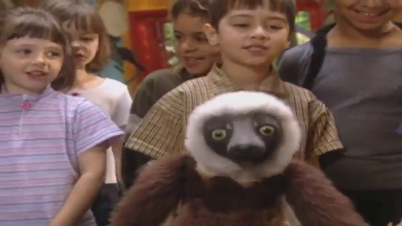 Zoboomafoo Kisscartoon