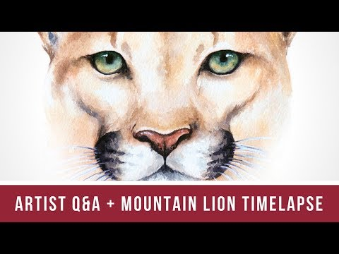 Artist Q&A - You Asked, I Answered! | Plus Mountain Lion Time Lapse