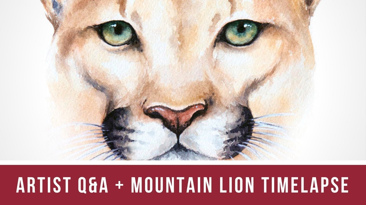 197c5ca70eb85 Artist Q&A - You Asked, I Answered! | Plus Mountain Lion Time Lapse