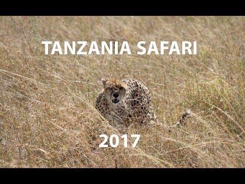 Tanzania Safari 2017 | Travel Film
