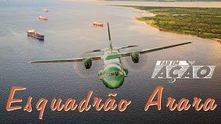 FAB em Ação - Esquadrão Arara