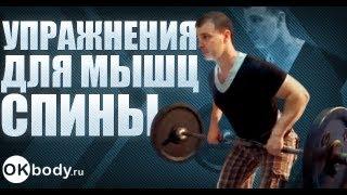 упражнения для мышц спины- как быстро накачать спину.(Обучающее видео от http://www.okbody.ru/ поможет вам быстро накачать спину. Показаны самые эффективные упражнения..., 2012-09-12T07:17:25.000Z)
