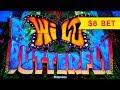 Wild Butterfly Slot - $8 Max Bet - LIVE PLAY BONUS, NICE!