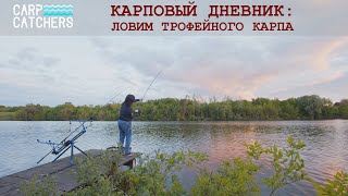 Секреты рыбалки на трофейного карпа. Как применять вареные бойлы?