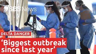 Queensland Delta variant cases rising in 'biggest outbreak' | SBS News