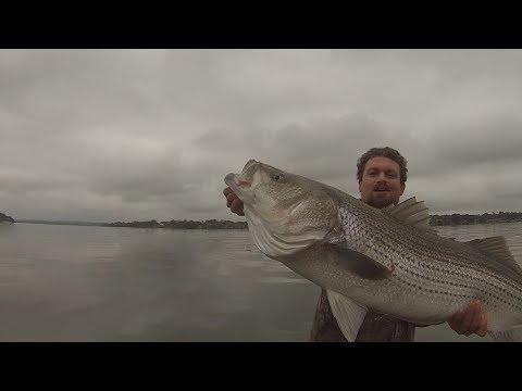 Old Hickory Lake October Birthday Bass Beatdown