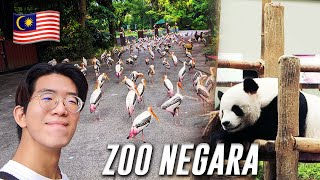 The Best Zoos In Malaysia