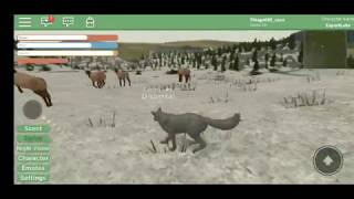 Yellowstone - WolfQuest no Roblox!