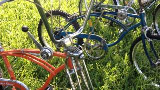 Vinage schwinn bicycle collection
