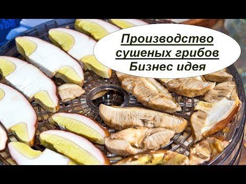 Оборудование для выращивания грибов в Украине – цены, фото