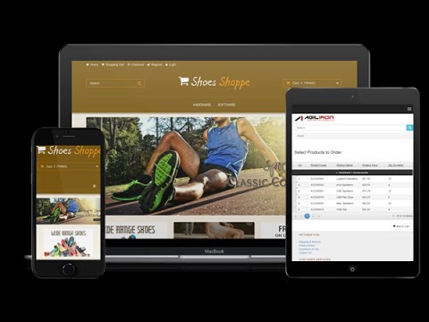 Agiliron B2B and B2C WebStore Demo Video