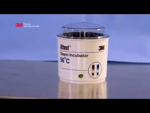 Attest® Incubadora para Autoclave 48 horas