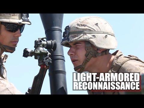 Light Armored Reconnaissance | 1st MARDIV Fires Mortars