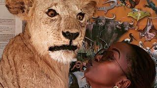 Chronicles Of Obuntu Ep.11. Kansiime Anne in Nairobi.