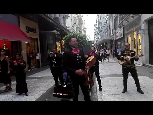 mariachi de buenos aires - el rey - tequila show