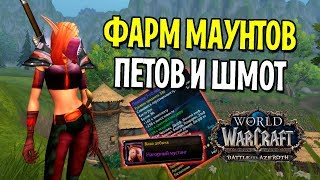 ФАРМ МАУНТОВ, ПЕТОВ И ШМОТ НА РАРНИКАХ В БИТВЕ ЗА АЗЕРОТ | WOW: BATTLE FOR AZEROTH