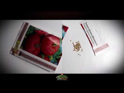 Семена Томат Шапка мономаха - Агролидер