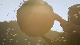 Medaus šalis | filmo anonsas | Honeyland