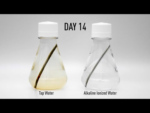 Alkaline Ionized Water Practical Test -Rust Test