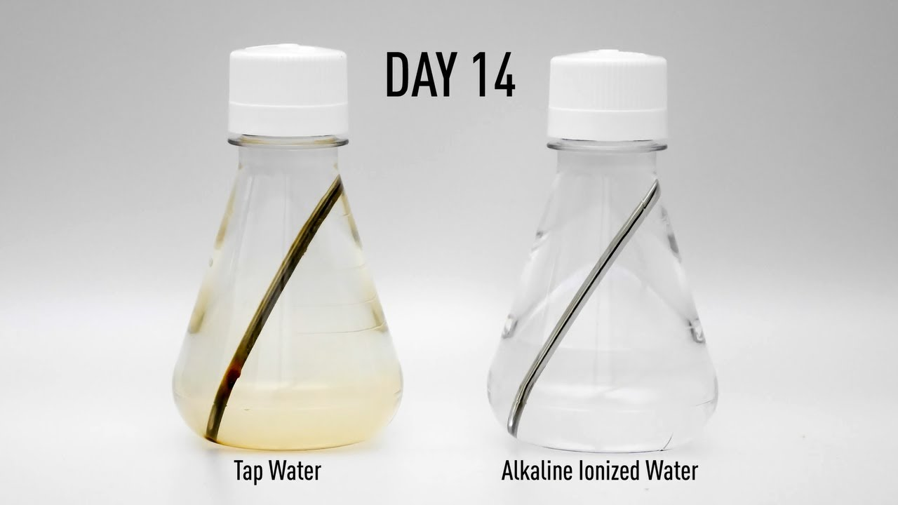 Výsledek obrázku pro water ionized