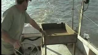 Shrimping Off Kiawah Island, South Carolina