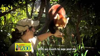 Cairns Tropical Zoo TVC - Endangered Exotics