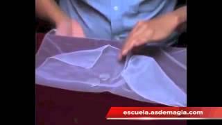 Vídeo: Flipper Pro Elastic System - 2€