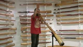 How To Imitate Animal Sounds On The Didgeridoo
