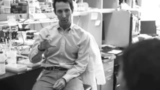 the next stage of leukemia drug development