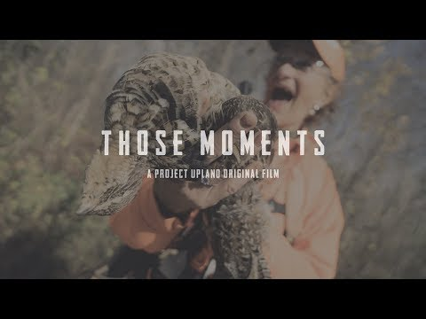 Maine Grouse Hunting - Those Moments - A Project Upland Original Film