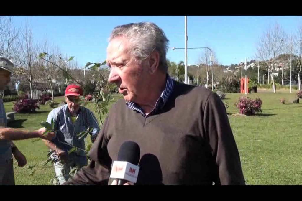 Lions Clube inicia plantio de árvores