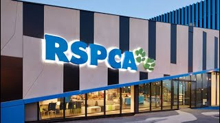 RSPCA - Pet Adoption in Melbourne