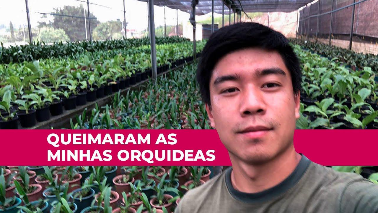 Fazenda Das Orquideas - INVERNO 3