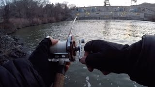 HOOKED THE BIGGEST FISH OF MY LIFE ...THEN MADE A ROOKIE MISTAKE