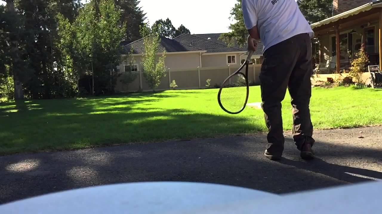 Border Collie Catches Slomo Wet Tennis Ball Youtube