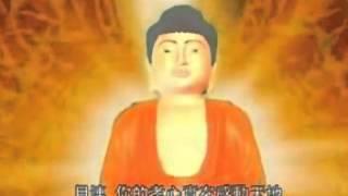 Phim Dai Loan | NGUYÊN NHÂN QUẢ BÁO | NGUYEN NHAN QUA BAO