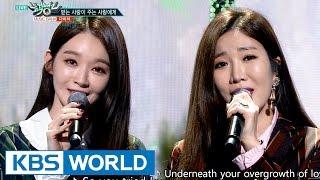DAVICHI Love Is 다비치 받는 사랑이 주는 사랑에게 Music Bank 2016 11 04