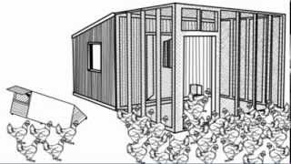 Chicken Coop Plans - How To Build A Chicken Coop With Plans,Blueprints,Guides,Instructions And More