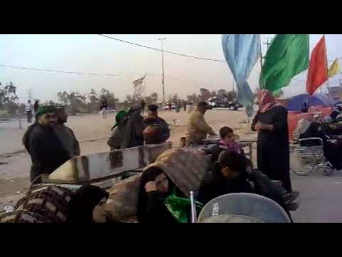 Azadar are going from Najaf to  Karbala by foot  2012