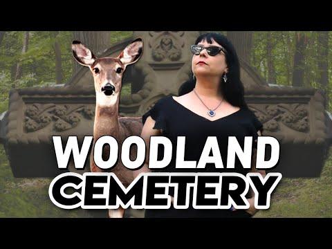 Deer In The Cemetery! Visiting Woodland Graveyard In London Ontario