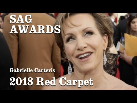 Gabrielle Carteris On The 2018 SAG Awards Red Carpet | Los Angeles Times