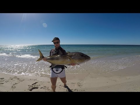 BEACH FISHING SURPRISE!